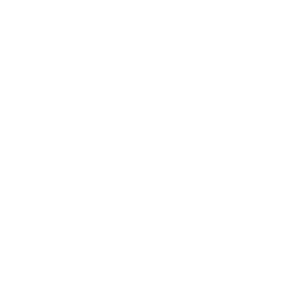 Investing in Volunteers logo white